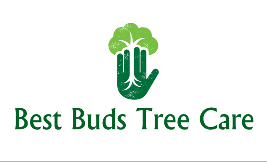 BEST BUD TREE CARE
