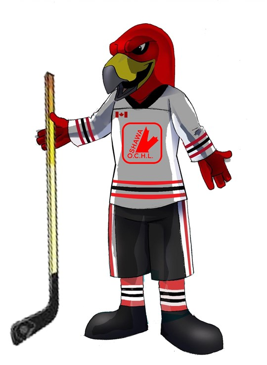 hockeyhawk_OCHL-new.JPG